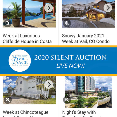 There are some great items to bid on in the We've Got Your Back Virtual Gala on-line Auction! Note some restrictions apply and may be geographically based.
