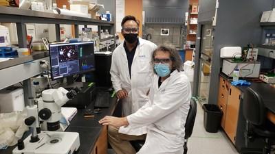 Le professeur Charles Ramassamy et le chercheur postdoctoral Jean-Michel Rabanel de l'INRS. (Groupe CNW/Institut national de la recherche scientifique (INRS))