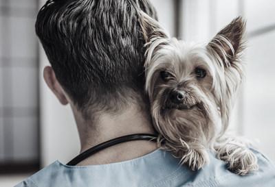 QBIOTICS' STELFONTA® receives FDA approval for canine mast cell tumors