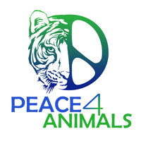 Peace 4 Animals Logo Peace 4 Animals & WAN Promote a Plant Based Diet & Support Farm Sanctuary With The Save a Life This Thanksgiving, Adopt a Turkey Billboard Campaign In Los Angeles