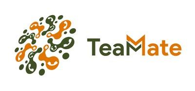 TeamMate Technology