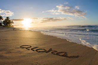 Westjet今天宣布,它与夏威夷的州合作开始为前往岛屿旅行的客人提供飞行前的Covid-19测试计划。来自Westjet实验室合作伙伴Dynalife的负面测试结果是在夏威夷出发的72小时内需要在夏威夷豁免客人在抵达时豁免客人所需的14天检疫。(CNW Group / Westjet,Alberta Partnership)