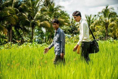 A microfinance loan officer visits a farmer in a rice field in Cambodia