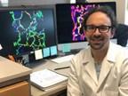 Pulmonary Fibrosis Researcher Wins NIH Award