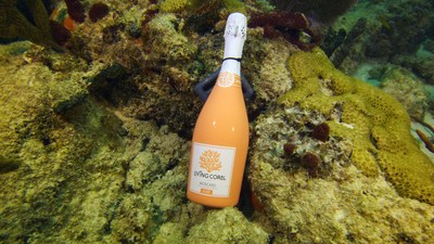The Force Blue team chilled down a bottle of Living Coral wine warrior style for a post dive toast.