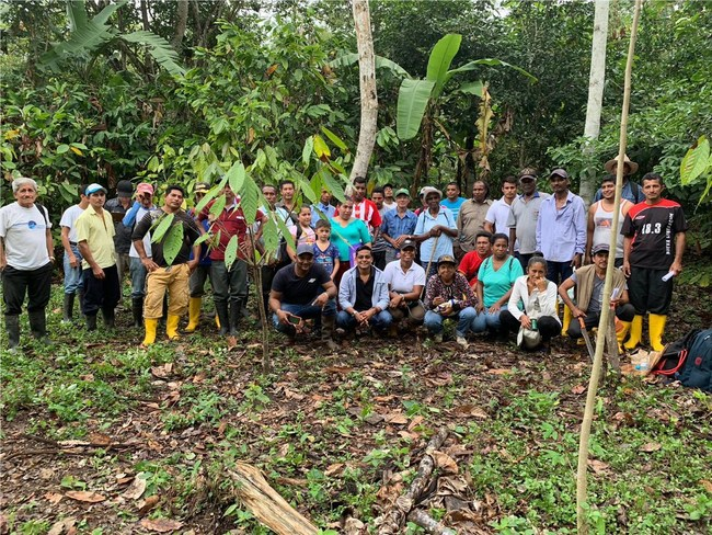 Smallholder Cocoa Farmers in Ecuador