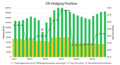 Hedging Chart 2020 (CNW Group/Crew Energy Inc.)
