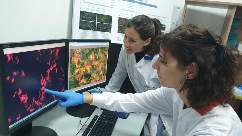 Kadimastem scientists looking at astrocyte cells comprising the AstroRx® product for the treatment of ALS (PRNewsfoto/Kadimastem)