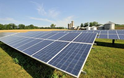 High angle view of modern solar panels on a dairy farm iStock.com/Freezeframestudio