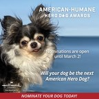 Is Your Dog a Hero to You? Nominations Open for the 2021 American Humane Hero Dog Awards®