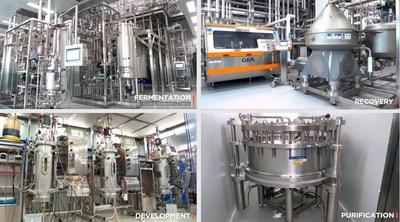Hanmi Pharmaceutical Co., Ltd Bio Plant manufacturing and Development facilities.