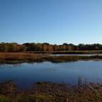 加拿大投资扩大新不伦瑞克的波多贝罗河国家野生动物保护区