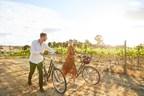 Aussie Wine Weekender: Countryside Cellar Doors in Canberra...