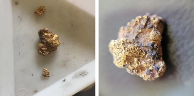 Figure 2 - Gold nuggets recovered from the Magazine grid along the Camp Hill Range (left), and a close-up of the 1.9g gold nugget on the right (larger nugget is approximately 1 cm across; photos courtesy of Dave Kiely). (CNW Group/E79 Resources Corp.)