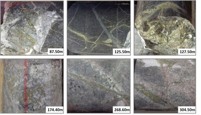 Plate 1: Core photographs from drill hole 18-ESP-025, which intersected 387 metres grading 0.57% Cu and 0.27 g/t Au. Mineralization was intersected at surface and is open at depth. Photographs show intense potassic alteration; quartz-chalcopyrite vein stockwork, K-feldspar and secondary biotite. (CNW Group/Libero Copper & Gold Corporation.)