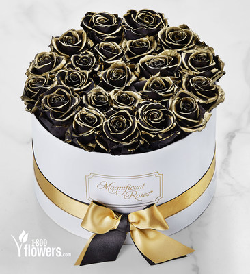 1-800-Flowers.com Magnificent Roses® Preserved Gold Kissed Black Roses
