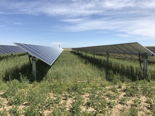 The 12 community solar gardens in total will produce enough clean electricity to power more than 5,100 residential Illinois homes.