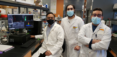 INRS research team composed of Professor Charles Ramassamy, specialist in Alzheimer's disease, PhD student Mohamed Raâfet Ben Khedher and postdoctoral student Mohamed Haddad (from left to right). (CNW Group/Institut National de la recherche scientifique (INRS))