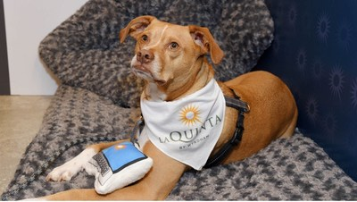 Wyndham Hotels & Resorts is offering U.S. guests $30 off their first Rover pet service when they book a qualified stay at any By Wyndham hotel, including hundreds of locations under its La Quinta by Wyndham brand.