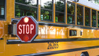 Queen Anne's County Announces New Safety Program to Protect...