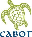 Capot Saint Lucia报告了销售成功并首次亮相新的海滨产品,因为发展进展