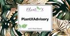 PlantX任命José Abbo为顾问团队主席