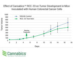 Cannabics Pharmaceutical's Interim in-vivo Study Results Show a 27% Lower Tumor Volume in Mice Treated with Company's Proprietary Drug Candidate for Colorectal Cancer