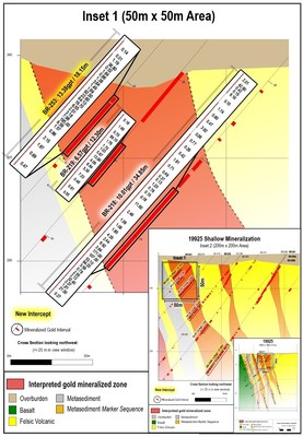 Figure 1: Individual assay level data from highlighted gold intervals at bedrock surface within a 50 metre x 50 metre sub-section of the LP Fault zone on cross section 19925. (CNW Group/Great Bear Resources Ltd.)