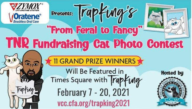 Cat owners can enter their cats in the competition beginning Sunday, February 7. Spectators can vote on their favorite cats from February 14 through 26 and the judges will announce the winners on Facebook February 27 and 28.