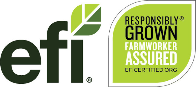 Equitable Food Initiative launches interactive online assessment to improve responsible recruitment in the fresh produce labor supply chain