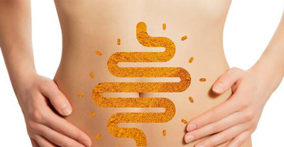 """New Research on Curcumin And The """"Brain"""" In Your Gut"""