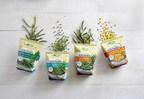 对于喜欢健康、天然食品的消费者来说,还有一个选择——邦杜elle推出了检测农药残留的新蔬菜系列