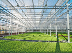 Gotham Greens Accelerates Growth With West Coast Expansion...