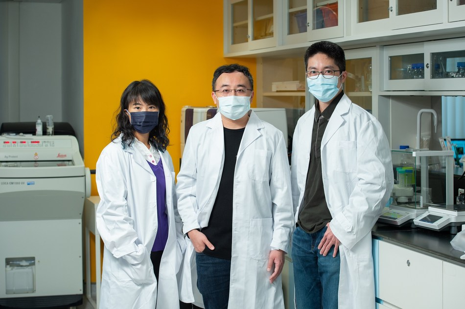 A research team led by Professor Gary Wong Ka-Leung (centre), Dr Lung Hong Lok (right) and Dr Law Ga-lai develop a novel dual-targeting drug for treating cancers associated with EBV.