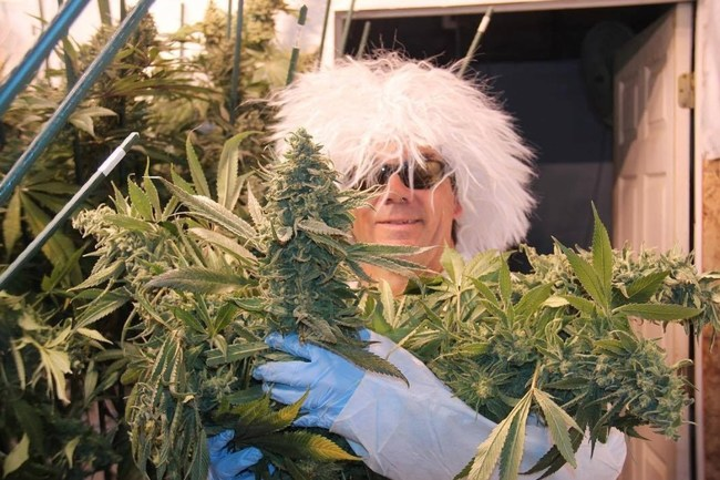 "Dakine 420 Founder & CEO sporting his ""Mad Scientist"" wig."
