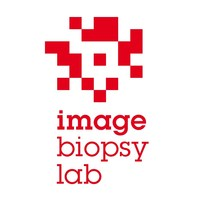 Image Biopsy Lab Logo (PRNewsfoto/Image Biopsy Lab)