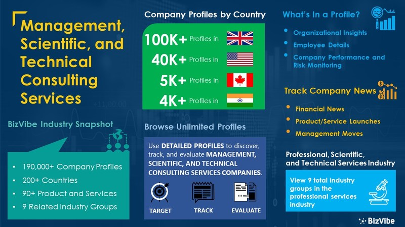 Snapshot of BizVibe's management, scientific, and technical consulting services industry group and product categories.