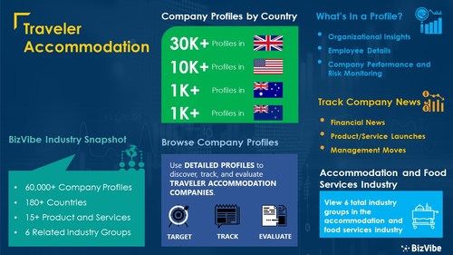 Snapshot of BizVibe's traveler accommodation industry group and product categories.
