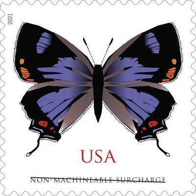 A New Stamp for Square Cards: the Colorado Hairstreak