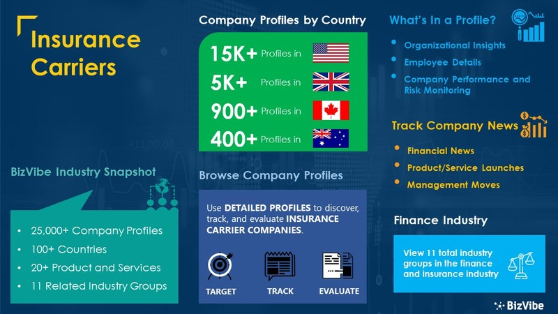 Snapshot of BizVibe's insurance carriers industry group and product categories.