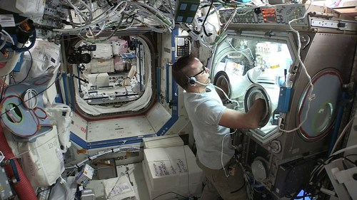 Astronaut Joe Acaba works with RevBio's first in vitro bone cell experiment on board the International Space Station U.S. National Laboratory in 2018. This new experiment will be an in vivo experiment using mice to study the company's bone adhesive biomaterial and its ability to facilitate bone repair, especially under osteoporotic conditions induced by the micro-gravity environment of outer space. Photo courtesy of NASA.