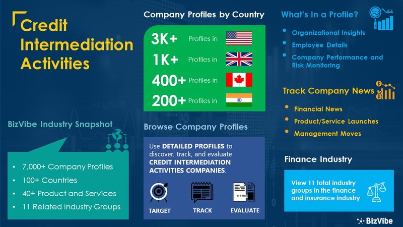Snapshot of BizVibe's credit intermediation activities industry group and product categories.