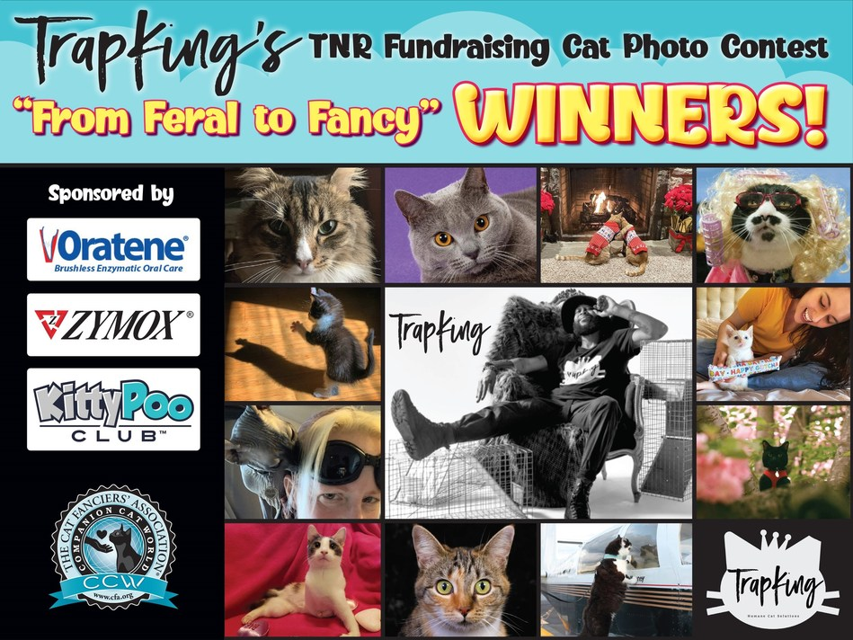 """Sterling """"TrapKing"""" Davis (center) presents the 11 winners of the CFA and Zymox Sponsored """"From Feral to Fancy Cat Photo Contest"""" on Times Square this week: Pepsi Garcia from Los Angeles, CA; Libby from Hurst, TX; Ozzie & Percy from Elizabethtown, PA; Smudge from Hunker, PA; Grou from August, GA; Ellen from White Plains, NY; Malakai & Kristi from Pahrump, NV; Puma from Baltimore, MD; Delilah from Fate, TX; Sassy from Johannesburg, South Africa and Crosby the Blind Cat from Cambellsville, KY"""