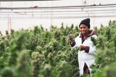 Irrigation lead Motlalepula excited for the upcoming harvest (CNW Group/Halo Collective Inc.)