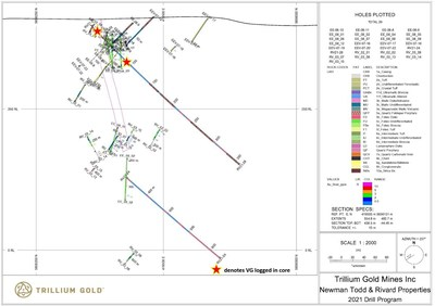 Figure 7: Section showing drillhole RV21-28. (CNW Group/Trillium Gold Mines Inc.)