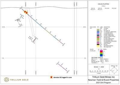 Figure 9: Section showing drillhole RV21-30. (CNW Group/Trillium Gold Mines Inc.)