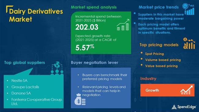Dairy Derivatives Market Procurement Research Report