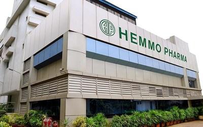 Hemmo_site