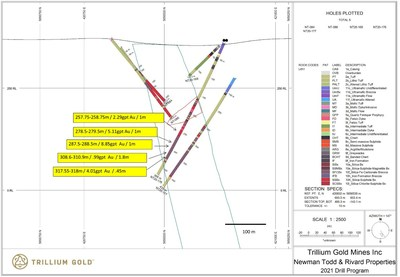 Figure 1: Section for hole NT20-176 showing significant mineralized intersections. (CNW Group/Trillium Gold Mines Inc.)