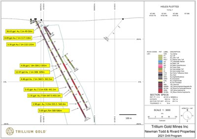 Figure 3: Section for hole NT20-179 showing significant mineralized sections. (CNW Group/Trillium Gold Mines Inc.)